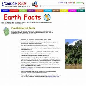Fun Rainforest Facts For Kids