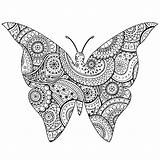 Butterfly Patterns Zentangle Paisley Coloring Shape Pages Adults Insects Butterflies Adult Animals Drawings Nature sketch template