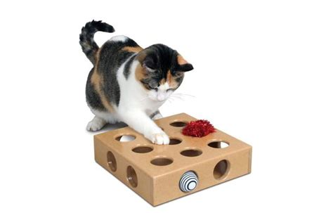 toys for cats top 15 best interactive cat toys 2017