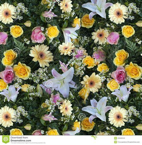 Tappeto Di Fiori by Tappeto Di Fiori Stock Photo Image Of Allower Flowers