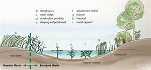 Vangilst  Licensed For Non  Wetlands