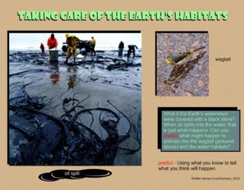 care   environment   grade earth day