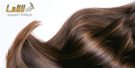 Hair By Dar by Hair Treatment Session At Dar Lama Salon Cobone