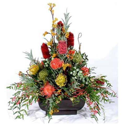 flowers australian native flowers