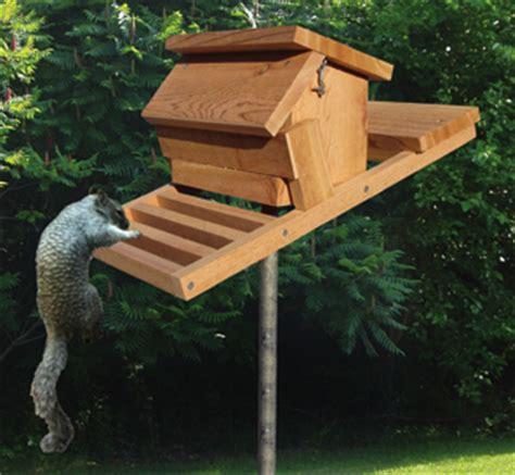 bird feeder woodworking plans squirrel proof birdfeeder