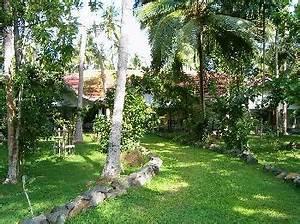 sri lanka hotel pension zimmer gunstig buchen With katzennetz balkon mit ayurveda garden sri lanka