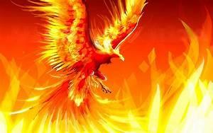 Phoenix Nebula Wallpaper iPhone 5 - Pics about space