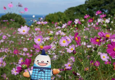 후쿠오카 관광 블로그 「FUKUOKA 수행자