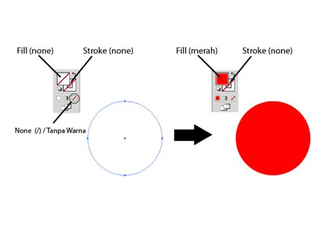 basic coloring  fill  stroke illustratorfreak