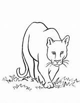 Coloring Den Daniel Lion Pages Printable Pdf Coloringhome sketch template
