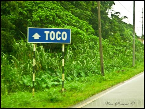 Panoramio - Photo of Toco - Trinidad