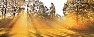 Die Farbe Gelb : farben symbolik gelb und seine bedeutung alpina farbe wirkung ~ Watch28wear.com Haus und Dekorationen