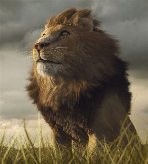 About Wild Animals Lion Adaptations Of African Lions