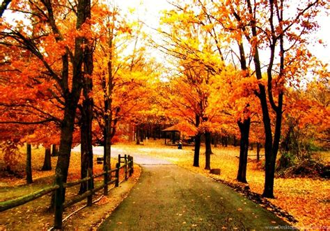Fall Backgrounds For Desktop by Pretty Fall Backgrounds Wallpapers Cave Desktop Background