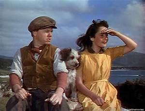 National Velvet (1944) - Toronto Film Society - Toronto ...