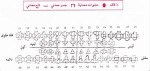Dental Chart In Arabic Used In Forensic Case Documentation