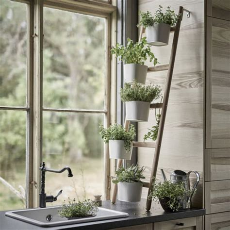 Best Indoor Window Plants by 19 Best Diy Indoor Garden Decoration Ideas Balcony
