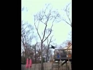 MOTHMAN CAUGHT ON CAMERA - YouTube