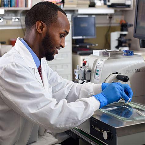 medical laboratory scientist explore health care careers