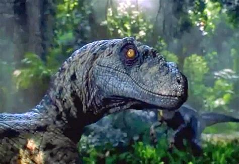Scientists Just Destroyed Our Dreams Of A Real Jurassic