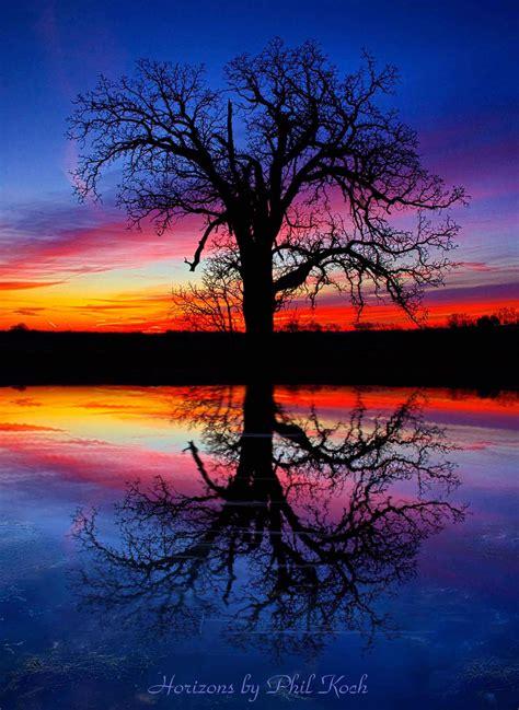 horizons  phil koch nature photography light lands