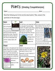 Plants Reading Comprehension  Reading Comprehension, Reading Passages And Comprehension Questions