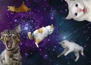 galaxy cats galaxy cats