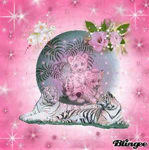 Love Pink and White Tiger Image
