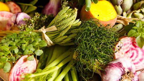 cours de cuisine ritz cours et ateliers cuisine cuisine végétarienne