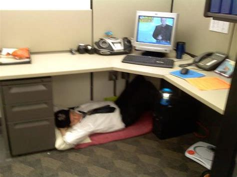 I Need Tips To Survive A Life In The Cubicle