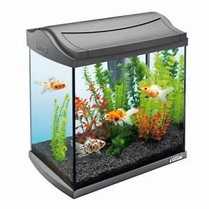 Aquarium Deko Ideen : 93 wohnzimmer einrichten aquarium wir haben fr sie ~ Lizthompson.info Haus und Dekorationen