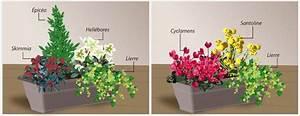 Jardiniere Fleurie Plein Soleil : composer une jardini re d 39 hiver jardinage ~ Melissatoandfro.com Idées de Décoration