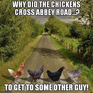 Image tagged in the beatles,abbey road,bad joke chicken ...