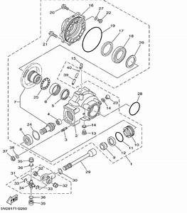 2001 Yamaha Raptor Wiring Diagram
