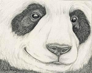 Pin by ♥ Debbie ♥ on pandas | Pinterest