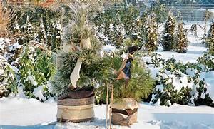 Winterharte Kübelpflanzen Hochstamm : winterharte k belpflanzen ~ Michelbontemps.com Haus und Dekorationen