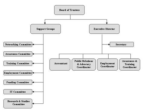Neda's Organizational Structure