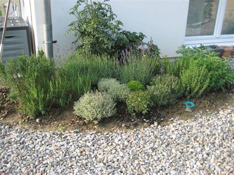gardena bewässerungssystem verlegen tropfschlauch selber machen kulturspezifische bew sserung bj bew sserungstechnik hochbeet bew