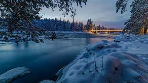 Snow, Covered, Trees, With, Bridge, Under, Lake, 4k, Hd, Nature