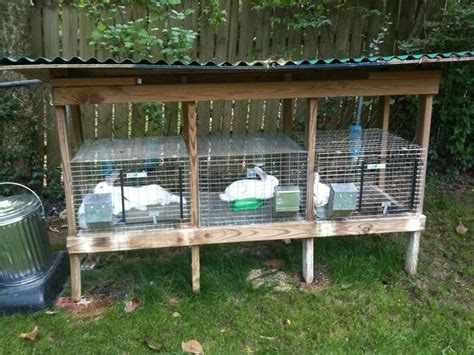 Outdoor Rabbit Hutch Using Wire Cages On Wood Frame And