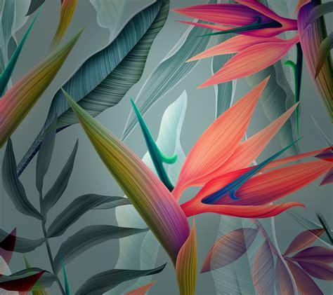 wallpaper leaves huawei mate  stock hd creative