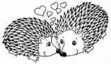 Porcupine Coloring 400px 41kb sketch template