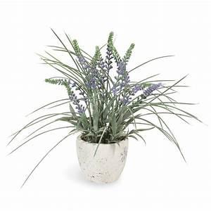 Lavendel Pflanzen Im Topf : k nstlicher lavendel im topf h 31 cm maisons du monde ~ Frokenaadalensverden.com Haus und Dekorationen