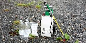 Vinaigre Blanc 14 Desherbant : test d sherbant cologique vinaigre sel eau ~ Melissatoandfro.com Idées de Décoration