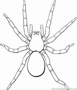 Spider Coloring Pages Printable Coloring Home