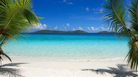Bora Bora Hd Wallpaper Tropics Beach Palm Trees Sand Hd Wallpaper 90864 Wallpapers13 Com