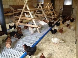 Hühnerstall Für 20 Hühner Kaufen : ein h hnerstall f r 20 h hner mit ihren h nden wie ein ~ Michelbontemps.com Haus und Dekorationen