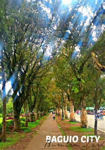 Benches Around Trees by Burnham Park Baguio City Philippines No Juan Is An Island