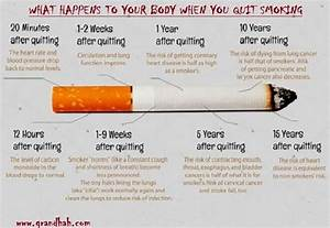 What happens to your body when you quit smoking cigarettes ...