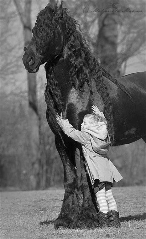عکس اسب کودکانه